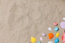 Painted Sea Shells on Sand  image 7