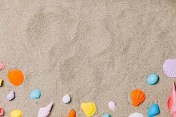 Painted Sea Shells on Sand  image 3