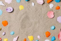 Painted Sea Shells on Sand  image 8