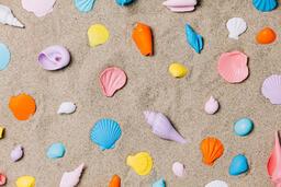 Painted Sea Shells on Sand  image 12
