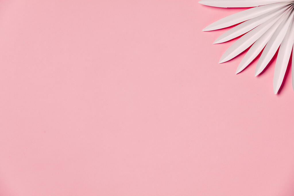 White Palm on Pink Background large preview