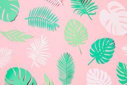 Tropical Paper Leaves on Pink Background  image 16