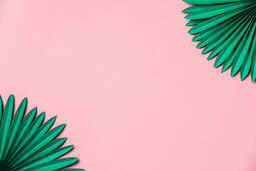 Green Palms on Pink Background  image 5