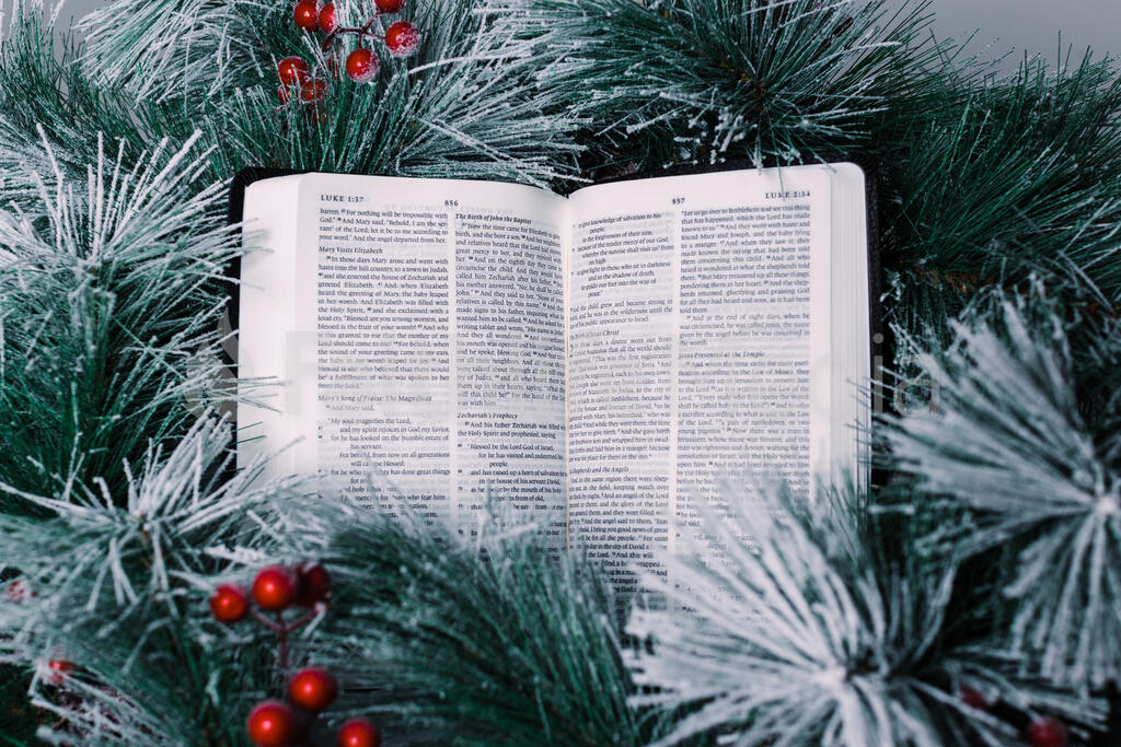 Bible Open to the Christmas Story with Greenery and Berries large preview