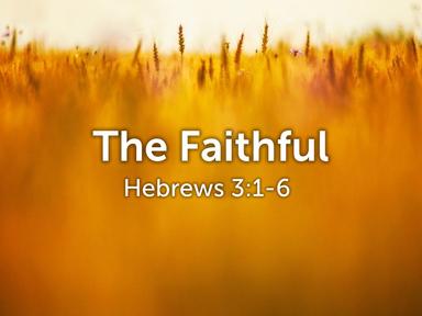 The Faithful 10/25/20