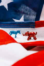 Blue Donkey and Red Elephant on an American Flag  image 2