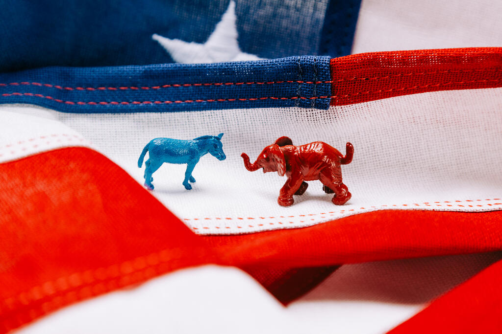 Blue Donkey and Red Elephant on an American Flag large preview