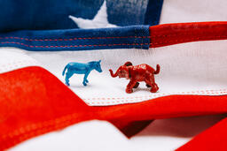 Blue Donkey and Red Elephant on an American Flag  image 1