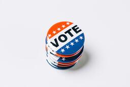 Vote Pins  image 4