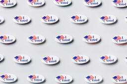 I Voted Stickers  image 2