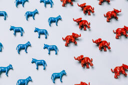 Blue Donkeys and Red Elephants  image 3