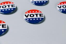Vote Pins  image 11