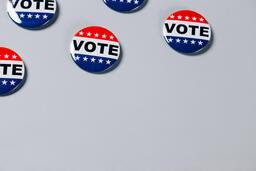 Vote Pins  image 10