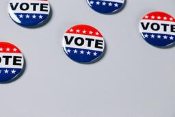 Vote Pins  image 14