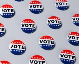 Vote Pins  image 18