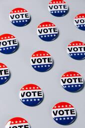 Vote Pins  image 17