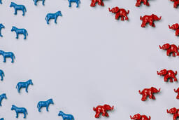 Blue Donkeys and Red Elephants  image 11