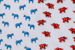 Blue Donkeys and Red Elephants  image 2