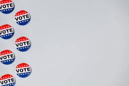 Vote Pins  image 13