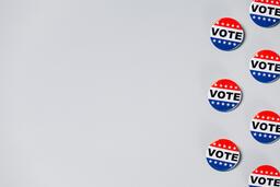Vote Pins  image 12
