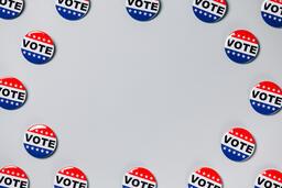Vote Pins  image 1