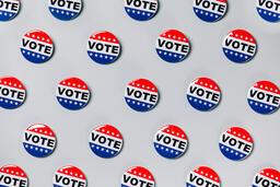 Vote Pins  image 7