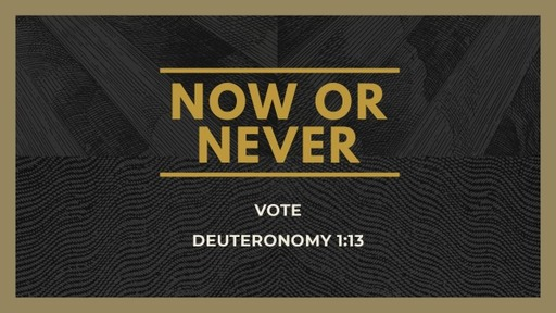 Now or Never Vote