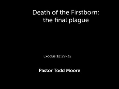 Death of the Firstborn:  the final plague