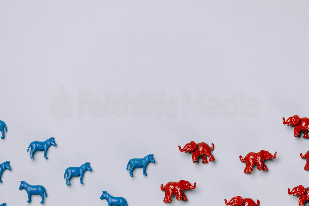 Blue Donkeys and Red Elephants large preview