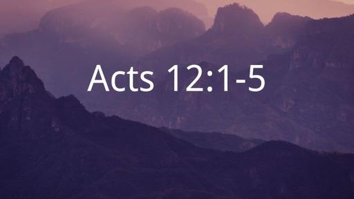 Persecution, Politics & Prayer