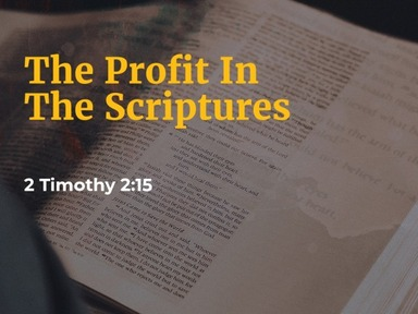 The Profit In The Scriptures