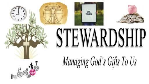 Stewardship pt.2  talent
