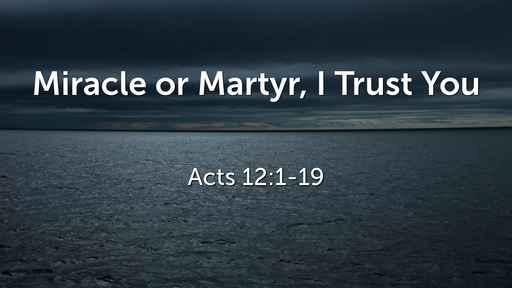 Miracle or Martyr, I Trust You