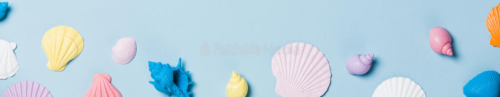 Painted Sea Shells on Blue Background large preview