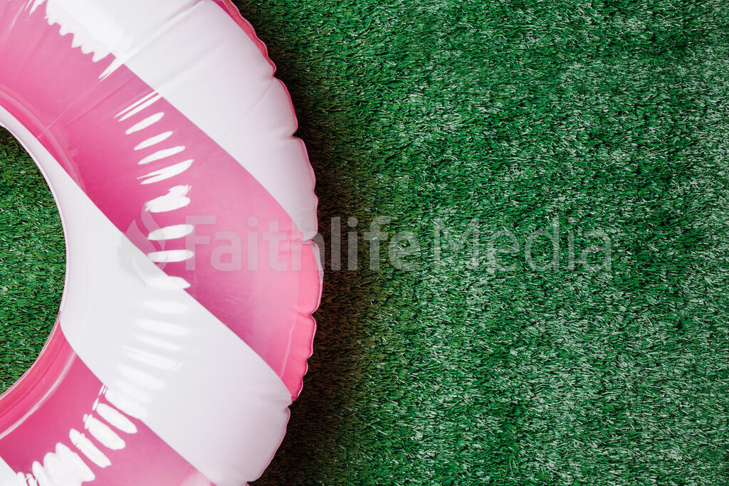 Blue and White Inner Tube on Grass large preview