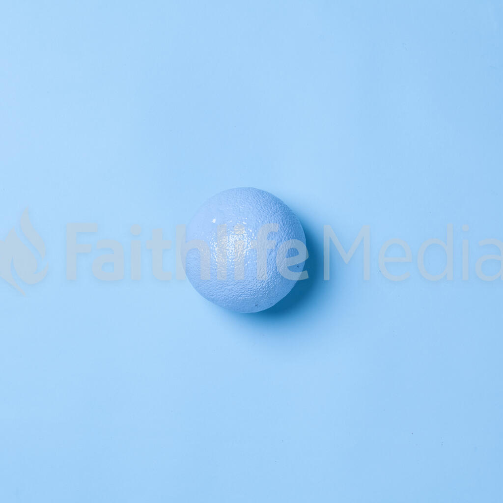 Blue Citrus on Blue Background with Palm Leaves large preview
