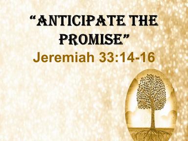 Anticipate Advent