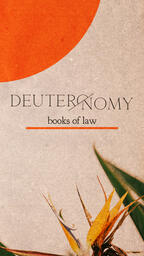 Deuteronomy Books of Law  PowerPoint image 8