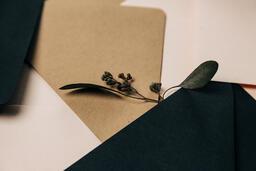 Wedding Stationary Elements  image 4