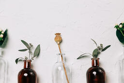 Florals and Greenery in Bud Vases  image 8