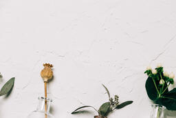 Florals and Greenery in Bud Vases  image 14