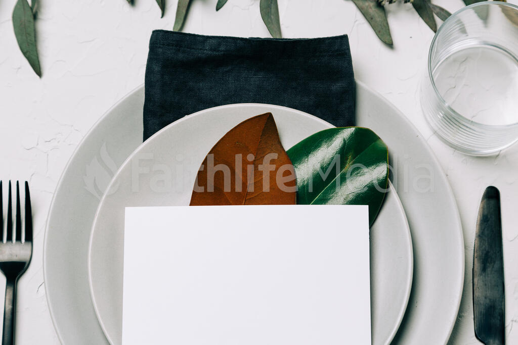 Place Setting large preview