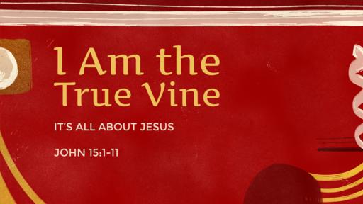 I AM the True Vine John 15:1-11