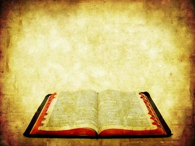 Life of David Part 29