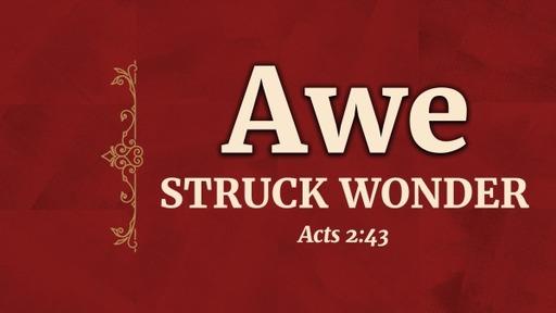 Awe Struck Wonder