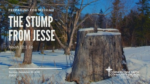 December 20, 2020 - The Stump from Jesse