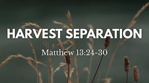 Harvest Separation - Oct. 11th, 2020
