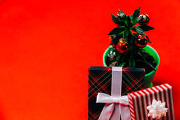 Tropical Plant with Christmas Ornaments and Gifts  image 7