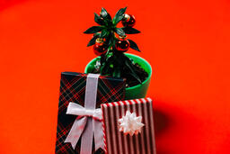 Tropical Plant with Christmas Ornaments and Gifts  image 1
