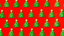 Mini Christmas Trees  image 7
